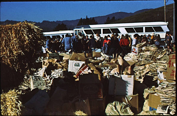 3*Mon, Jan 18, 1971<br /> People: volunteers<br /> Subject: straw, newspaper<br /> Place: Mill Valley, Marin Co<br /> Activity: <br /> Comments: used to get oil off birds