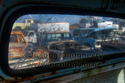 © Joseph Dougherty. All rights reserved.  An old truck's rear window in a junkyard in Richmond, CA.