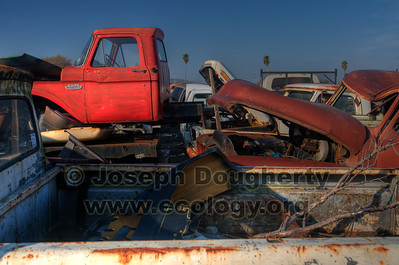 © Joseph Dougherty. All rights reserved.  An old truck in a junkyard in Richmond, CA.