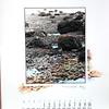 P&P Calendar 1988 008