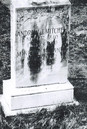 ANDREW JACKSON MITCHELL FAMILY