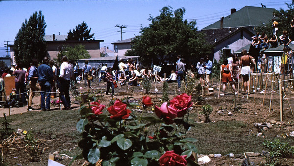 5*Fri, May 30, 1969<br /> *People: 40 gardeners<br /> Subject: red rose<br /> *Place: PPA<br /> Activity: PPA<br /> Comments: UCLA, Stanford