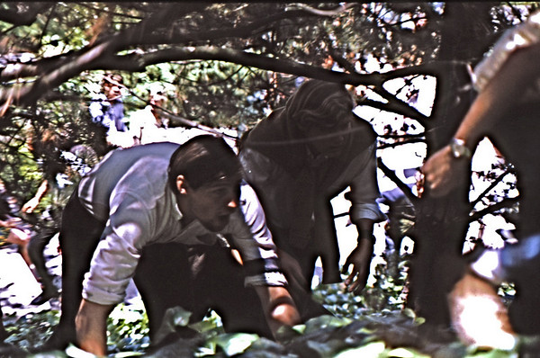 4*Tue, May 20, 1969<br /> *People: 2 students<br /> Subject: clamering thru bushes<br /> *Place: west campus<br /> Activity: ppp<br /> Comments: