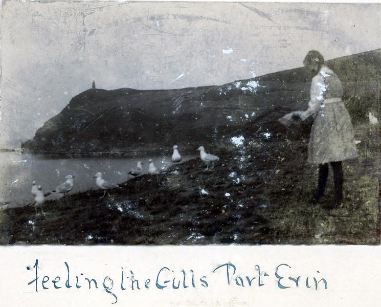 Port Erin Feeding the Gulls 1912
