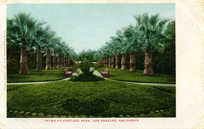 Palms at Eastlake Park