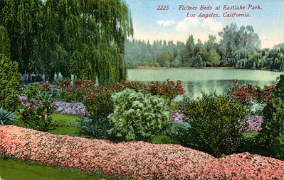 Flower Beds at Eastlake Park