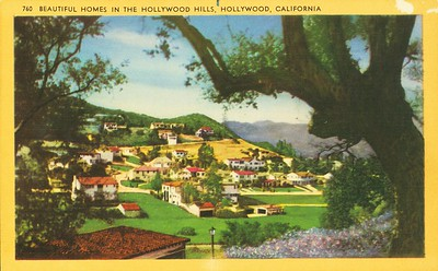 Homes on a Hollywood Hill
