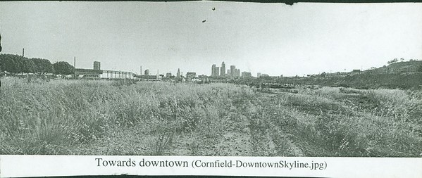 Cornfield Downtown Skyline