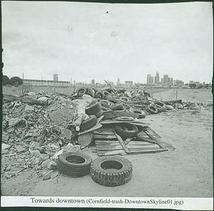 Cornfield Trash