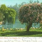 Lake at Balwin's Ranch