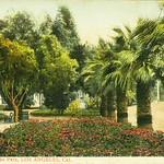Westlake Park Scene