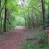 Behind the visitor center is a nice half-mile loop trail which I couldn't help but take a look at...