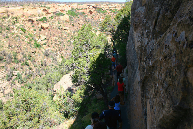 Cliff Palace Trail