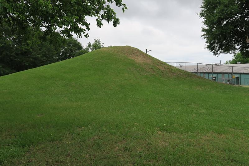 McDougal Mound (ca. 900-1350)