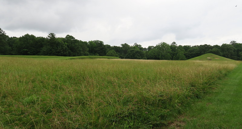 Cornfield Mound and Earth Lodge