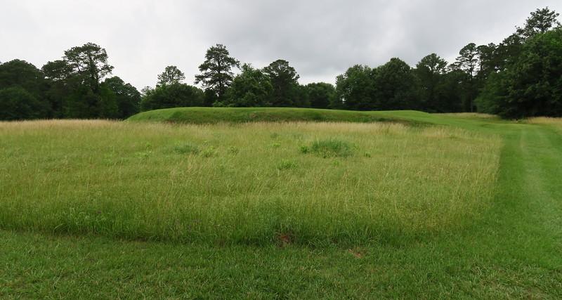 Cornfield Mound
