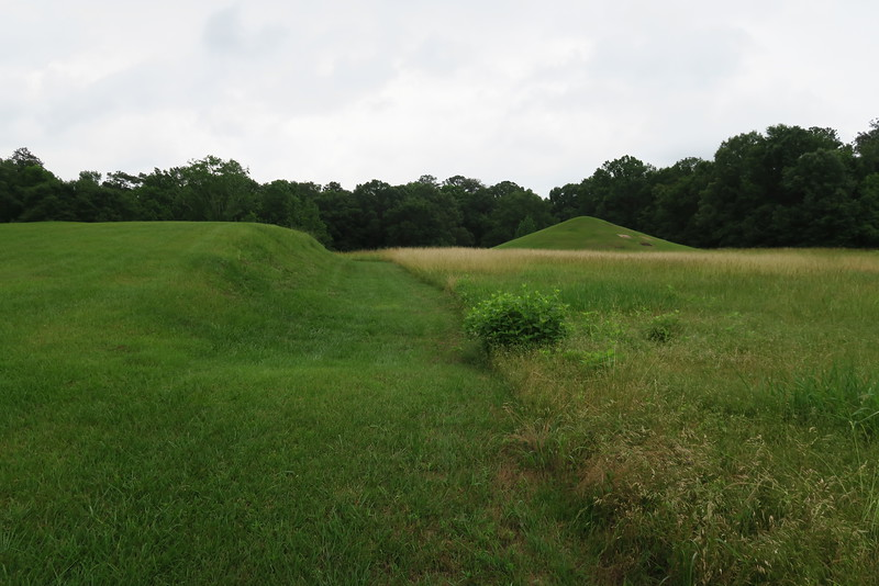 Cornfield Mound (with Earth Lodge on right)