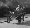 Rawtenstall Hargreaves Drive 1965 rag and bone