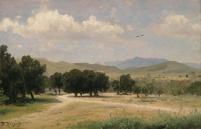 187-ValleyNearLosAngelesCalifornia-Herzog,Hermann.jpg