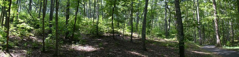 Battlefield Trail - South Carolina & Georgia Positions