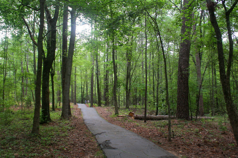A pleasant paved trail leads from the visitor center out to the Star Fort...