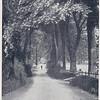 Chatburn to Grindleton 1900