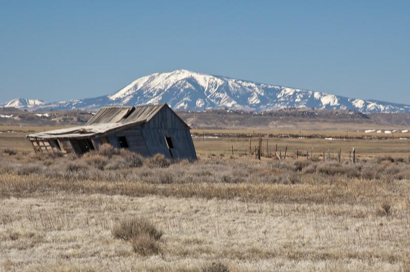 Wind Blown Ranch-0874