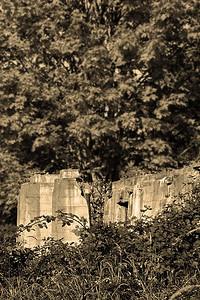 Ruins (96544195)