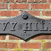 IVY HILL 1882