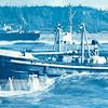 Salvage Chief  1959  M V  Tipari  Washington Coast