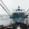 Salvage Cheif Escorting  Exxon Valdez Entering San Diego
