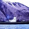 Salvage Chief Anchored Kalekta Bay 1980 Start Raising Sunken King Crabber  Arctic Wind From over 100 ft depth Alaska