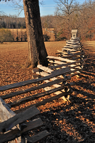 """The Union line at the """"Hornets Nest"""" - Battle of Shiloh"""