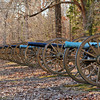 "Confederate artillery line at the ""Hornets Nest"""