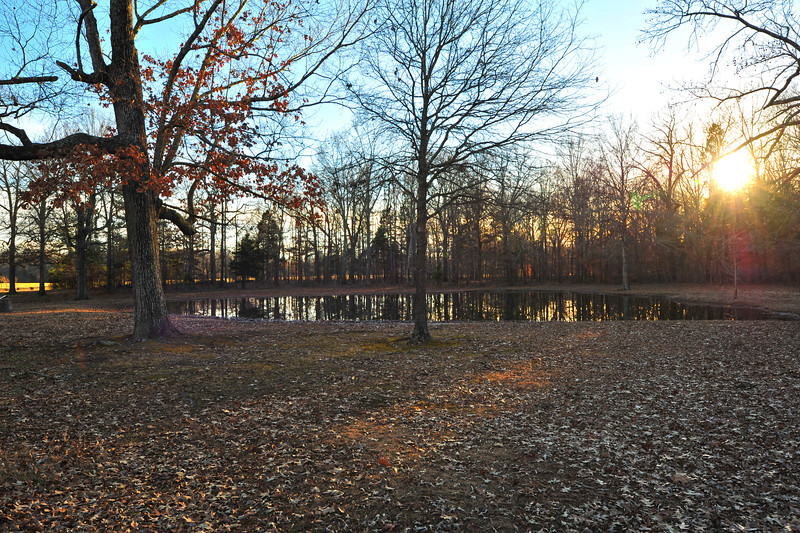 """The """"Bloody Pond"""" on the Shiloh Battlefield."""