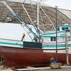 Markusen Family boats