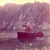 APA 8  Built 1949 Seattle  Alaska Packers  Kodiak