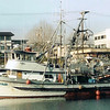 Karen_Rae_Pacific_2_Built_1963_Starlet_Corp_John_Breskovich_Barrett_Momsaas_Dan_Majors