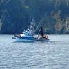 Sea_King,Built 1981 Sunnfjord,Floyd Miller,Paul_Holmberg_Sand_Point_Alaska,