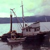 George W  Built 1929 Wrangell  Wrangell Packing  Burnett Inlet Salmon Isabelle Powers