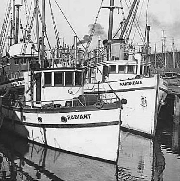 Radiant Built 1930 Seattle D G Mclean Martindale Built 1930 Seattle Birger Petersen Peder Bredal  Vessel Stranded and lost Mar 8  1969 Surf Bay Southwest coast of Akun Island Alaska