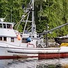 Tlingit Lady  Yankee Built Bellingham 1951 Paul John  Robert Glenovich Wilber James SR Ole Haynes Brenda Demmert  Curtis Demmert