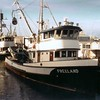 Tongass Lady, former name Valiant Lady, built 1955 at Marine Construction by J. A. Cole; owners Martin Tomich, Greg Moe.  Freeland built 1946, Tacoma; owner Antonio Martinis.
