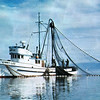 Ginny Lee,Coral Sea,Built 1945 Prothero Boat  Seattle,Donald Hamilton,Bill Bruce,Edward Churchill,Selmer Mickelson,Cliff Durgan,Jakob Bueche,