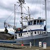 Jillimare  Peter E Patti Lu Built 1948 Tacoma  Joseph Evich Fishermens Packing Andy Pecaric Kevin Kasper Kurt Dobszinsky