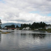 Klawock_Alaska_Cynthia_Rose_Otter