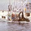 1977_Rhoda_Je_Anne_Larson_Bay