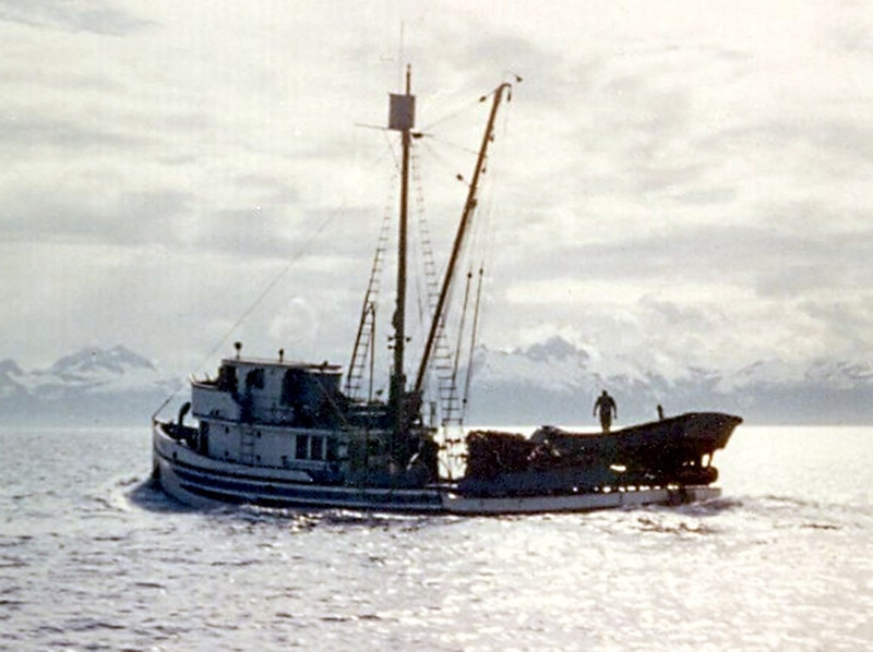Pacific_Pride,Built 1940 Tacoma,Elias Hansen,John Sellereit,P A F,Loaded_Herring_Alaska