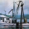 Colleen,Paula B,Barbara Faye,Nite Cap,Built 1957 Seattle,Wards Cove,Ducan Maclean,Arlene Willis,Cholmondeley Sound Alaska,