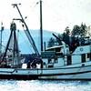 Susan Ann  Built 1949 Anacortes  Farwest Fisheries  Fidalgo Packing  Trident Seafoods    Whitney Fidalgo  Rick Rocheleau   Bryan Howey